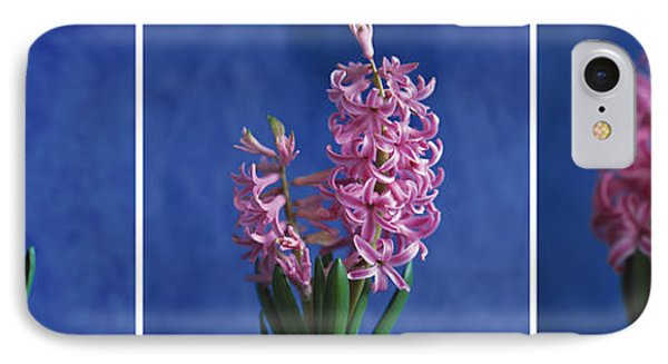 IPhone Case featuring the photograph Hyacinth by Lana Enderle