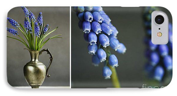 Hyacinth Still Life IPhone Case by Nailia Schwarz