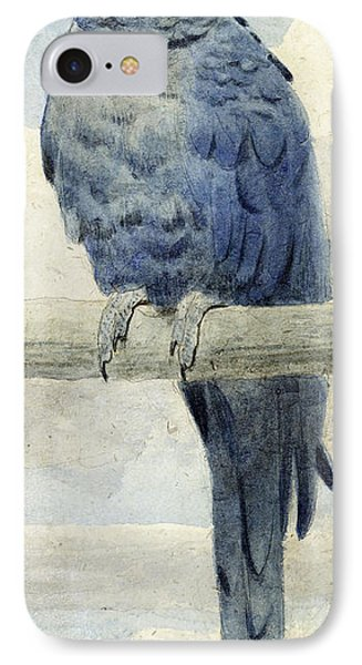 Hyacinthine Macaw Phone Case by Henry Stacey Marks