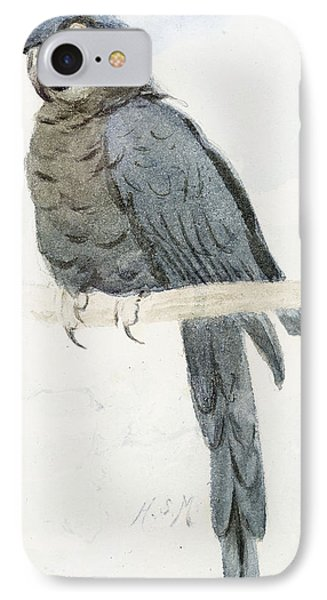 Hyancinth Macaw Phone Case by Henry Stacey Marks