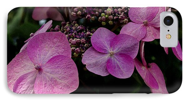 IPhone Case featuring the photograph Hydrangea Flowers  by James C Thomas