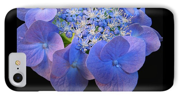 Hydrangea Blossom Macro IPhone Case by Brooks Garten Hauschild