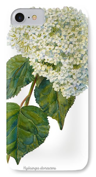 Hydrangea Aborescens IPhone Case by Janet  Zeh