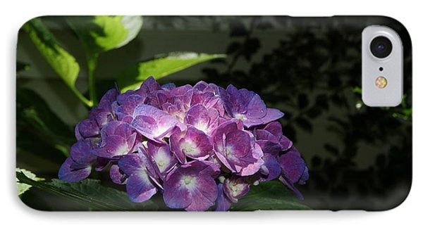 IPhone Case featuring the photograph Hydrangea Season by Margie Avellino