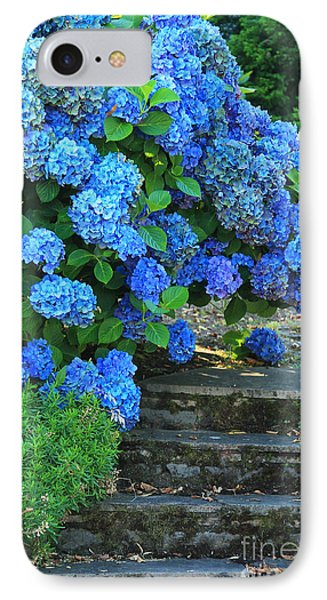 Hydrangea Steps 2 IPhone Case by Jeanette French