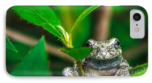 IPhone Case featuring the photograph Hyla Versicolor by Rob Sellers