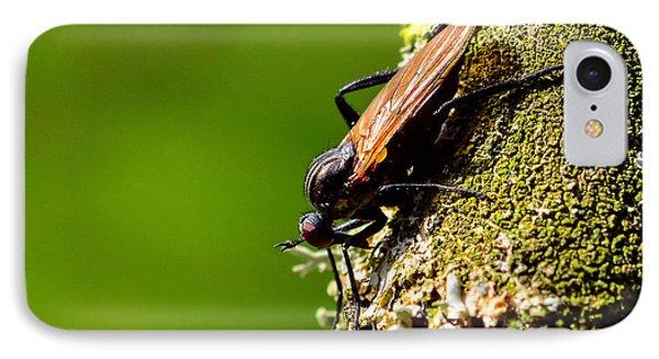 Hymenoptera IPhone Case