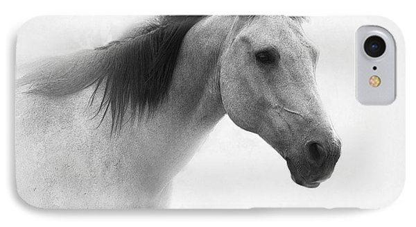 I Dream Of Horses IPhone Case by Betty LaRue