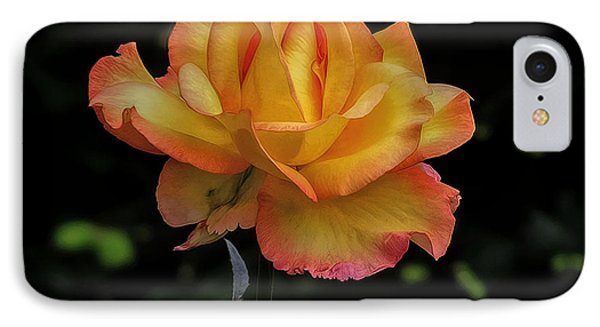 IPhone Case featuring the photograph I Know I'm Beautiful by Hanny Heim
