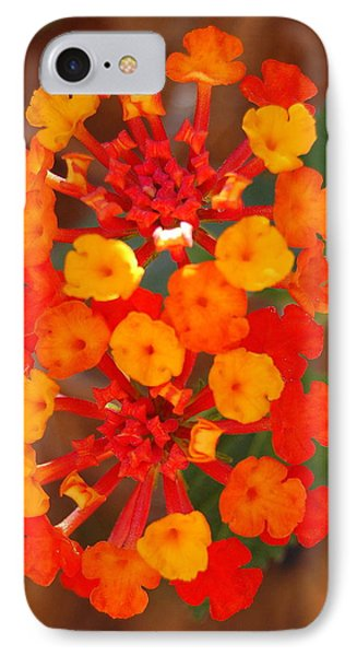 IPhone Case featuring the photograph I Love Orange by Lew Davis