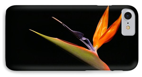 IPhone Case featuring the photograph I Love You Too by Evelyn Tambour