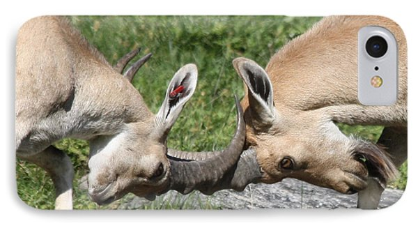 IPhone Case featuring the photograph Ibex Doing Battle by John Telfer