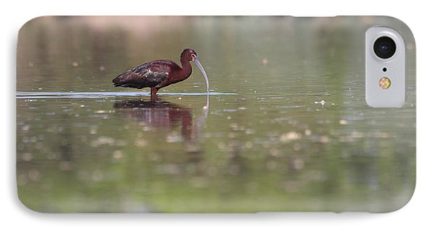 IPhone Case featuring the photograph Ibis In The Environment by Ruth Jolly