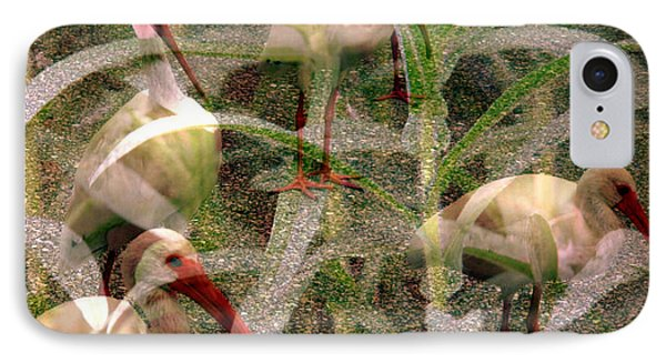 IPhone Case featuring the photograph Ibis In The Tall Grass by Irma BACKELANT GALLERIES