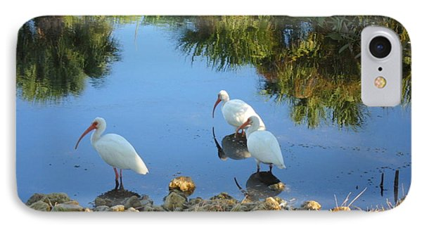 Ibis In Three IPhone Case by Val Oconnor