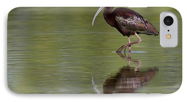 Ibis Reflection IPhone Case