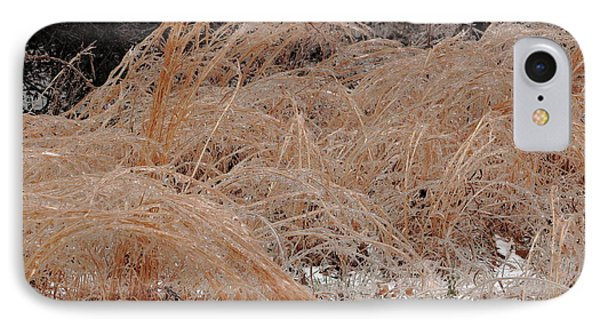 Ice And Dry Grass IPhone Case by Daniel Reed