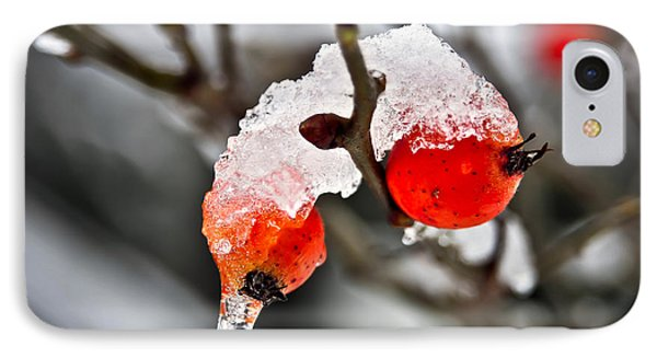IPhone Case featuring the photograph Ice Berries by Crystal Hoeveler