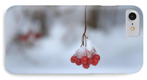 IPhone Case featuring the photograph Ice Berries by Sabine Edrissi