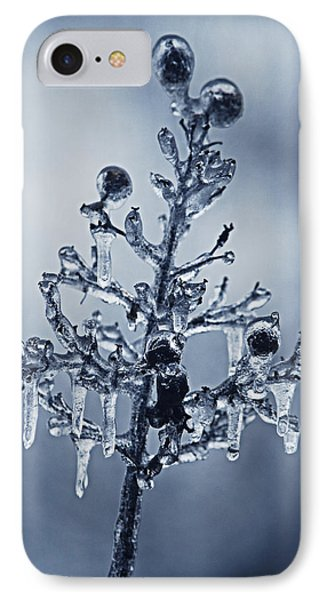 IPhone Case featuring the photograph Ice Bouquet by Linda Segerson