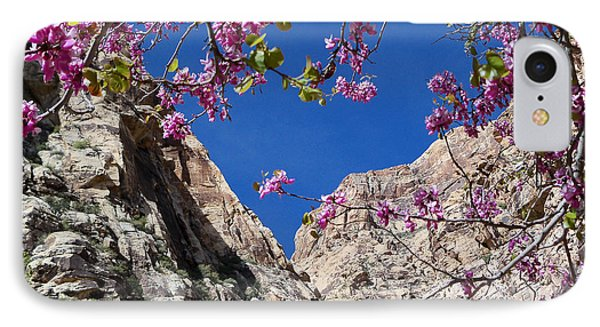 Ice Box Canyon In April IPhone Case by Alan Socolik