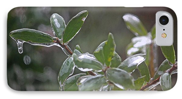 Ice Coated Holly II IPhone Case by Suzanne Gaff