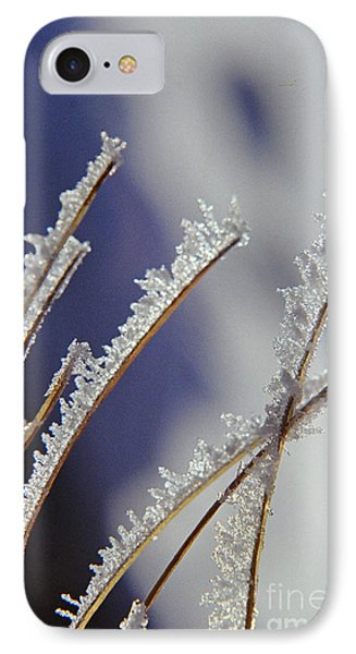 IPhone Case featuring the photograph Ice Crystals On Fireweed Fairbanks  Alaska By Pat Hathaway 1969 by California Views Mr Pat Hathaway Archives