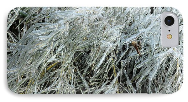 Ice On Bamboo Leaves IPhone Case by Daniel Reed