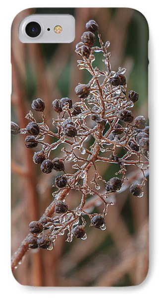 IPhone Case featuring the photograph Ice On Berries by Patricia Schaefer