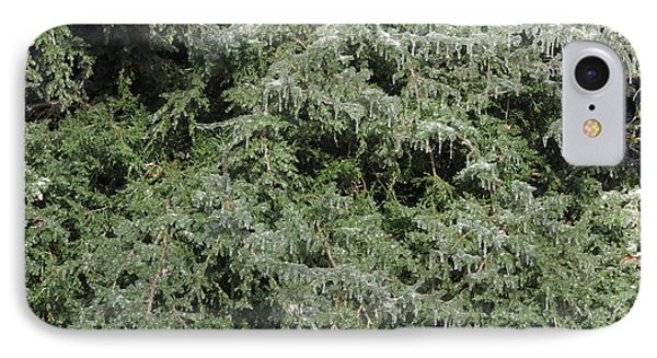 IPhone Case featuring the photograph Ice On Eastern Red Cedar by Daniel Reed