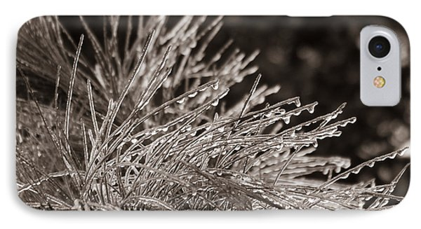 IPhone Case featuring the photograph Ice On Pine by Patricia Schaefer