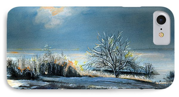 Ice Storm Coast Of Maine IPhone Case by Cindy McIntyre