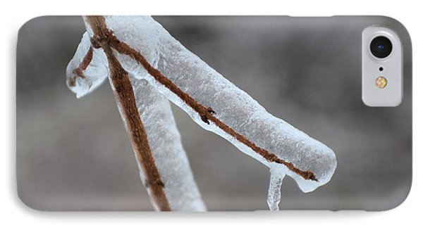 IPhone Case featuring the photograph Ice Twig by Douglas Pike