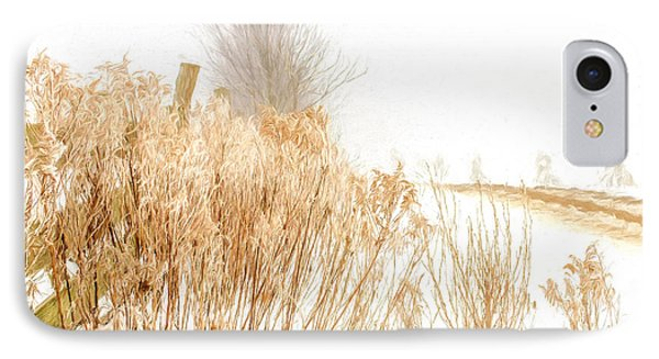 Iced Goldenrod At Fields Edge - Artistic IPhone Case