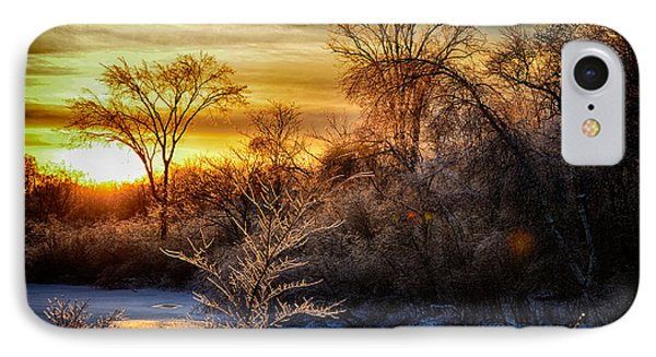 Iced Sunset Phone Case by Wanda Clowater