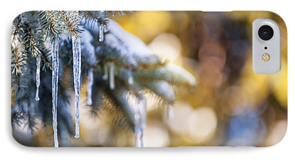 Icicles On Fir Tree In Winter IPhone Case by Elena Elisseeva