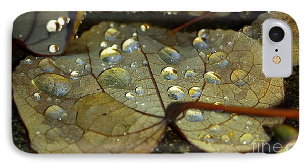 Icy Leaf Phone Case by Heather L Wright