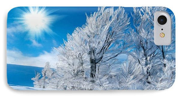 Icy Trees IPhone Case by Bruce Nutting
