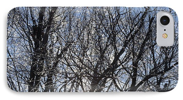 Icy Trees  Phone Case by Luther   Fine Art