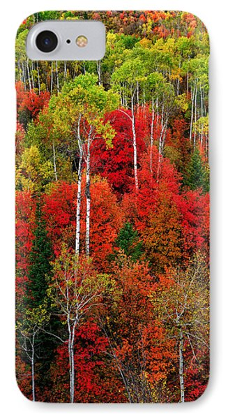 Idaho Autumn IPhone Case by Greg Norrell