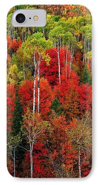 Idaho Autumn IPhone Case
