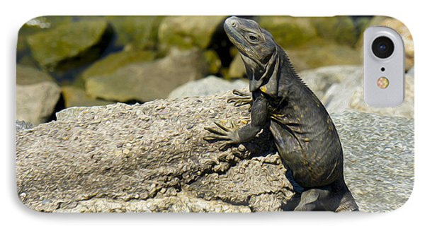 Iguana IPhone Case by Aged Pixel
