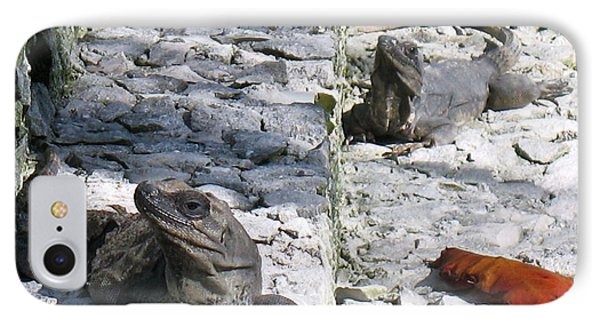 IPhone Case featuring the photograph Iguana Bask In The Sun With You by Patti Whitten