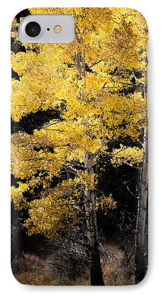 Illuminated IPhone Case by The Forests Edge Photography - Diane Sandoval
