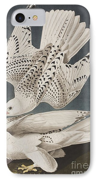Illustration From Birds Of America IPhone 7 Case by John James Audubon