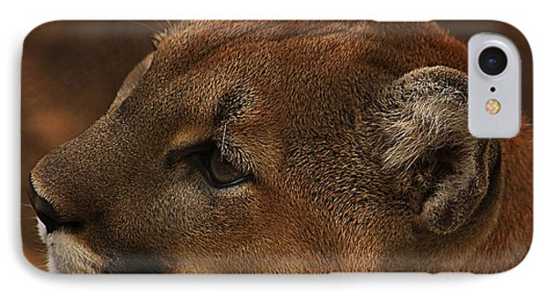 IPhone Case featuring the photograph I'm Watching You... by Tammy Schneider