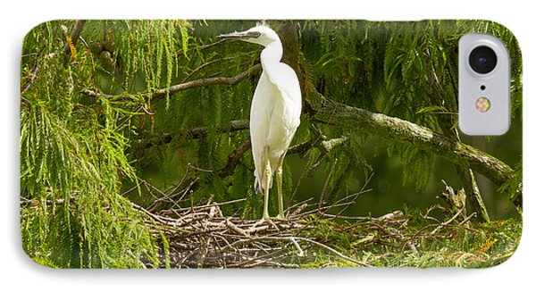 IPhone Case featuring the photograph Immature Little Blue Heron by Doug McPherson