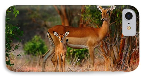 Impala And Young IPhone Case