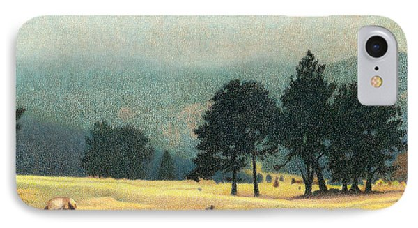 Impression Evergreen Colorado IPhone Case by Dan Miller