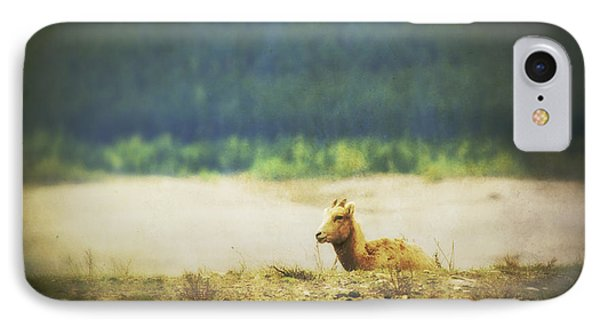 Impressionistic Style Of A Bighorn Phone Case by Roberta Murray